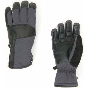 Spyder B. A. GTX Ski Gloves M M