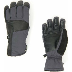 Spyder B. A. GTX Ski Gloves M L