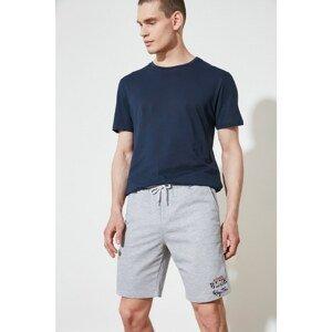 Trendyol Gray Men's Regular Fit Shorts & Bermuda
