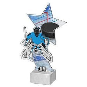 ACTH1M5 trofej hokej stříbrná