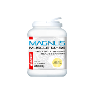 Gainer Penco Magnus 2800 G