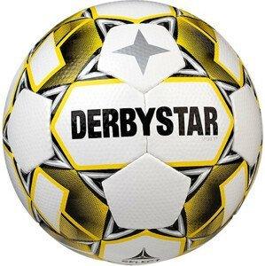 Lopta Derbystar Apus TT v20 Training Ball