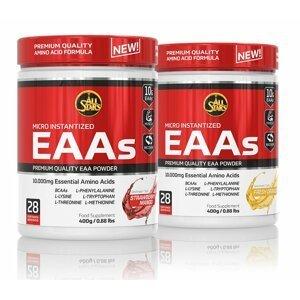 Micro Instantized EAAs - All Stars  400 g Blueberry Lemonade