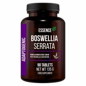 Boswelia Serrata - Essence Nutrition 90 tbl.