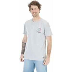 Picture RICARDO sivá XL - Pánske tričko s potlačou